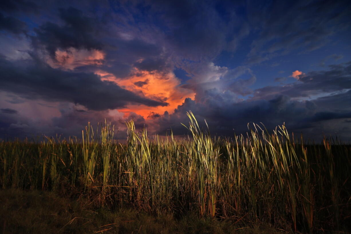 FILE - In this Oct. 20, 2019 photo, a clearing late-day storm adds drama in the sky over a sawgrass prairie in Everglades National Park in Florida.  The Biden administration is outlining a plan to sharply increase conservation of public lands and waters over the next decade. A report to be issued Thursday recommends a series of steps to achieve a nationwide goal to conserve 30% of U.S. lands and waters by 2030. (AP Photo/Robert F.