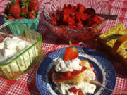 Whether you like your strawberries and whipped cream on warm shortbread or a buttery biscuit, either way, it's a scrumptious mouthful of summer.
