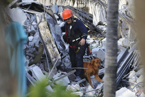 Fire rescue personnel conduct a search and rescue with dogs through the rubble of the Champlain Towers South Condo after the multistory building partially collapsed in Surfside, Fla., Thursday, June 24, 2021.