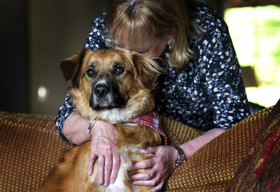 Linda Oswald hugs her dog Tilly on Tuesday at their home in Hayden, Idaho. Tilly vanished for two days after being ejected from a vehicle during a car accident.