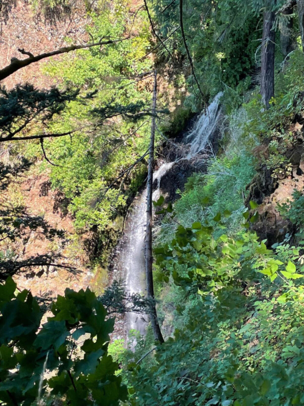 Coopey Falls is along the Angel's Rest Trail in the Columbia River Gorge.