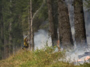 Washington Department of Natural Resources firefighter Chris Werner of Chehalis sprays the south fireline of the Archer Mountain fire on Wednesday, Sept. 6 2017, in Skamania County.