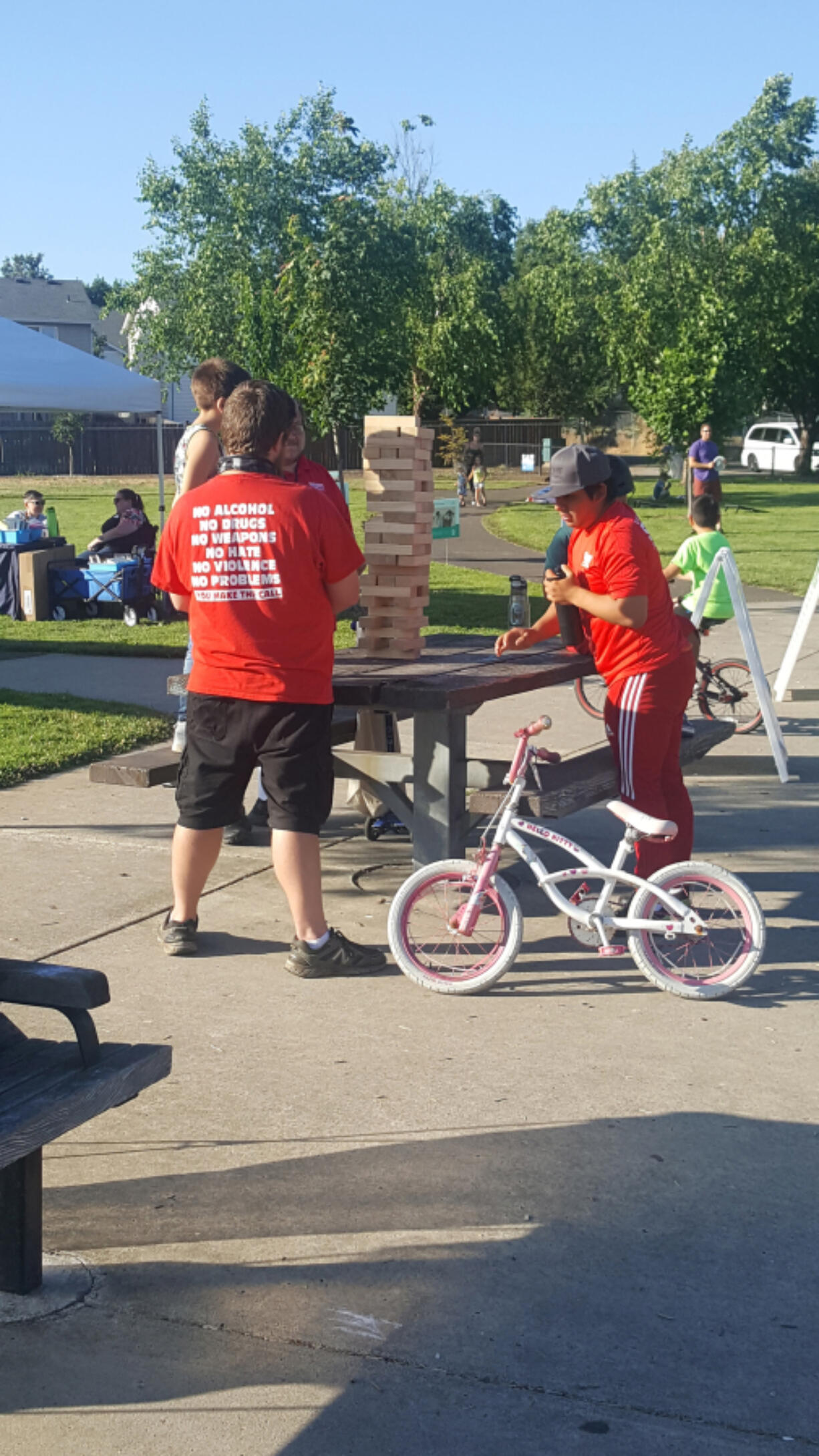 CARTER PARK: Party in the Parks, a program by Vancouver Parks and Recreation, kicked off on July 6 at Brickyard Park.