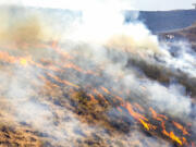 People stand behind the fire line as the flames spread through dry grasses at the Steptoe Canyon Fire  Thursday, July 22, 2021 in Colton, Wash.