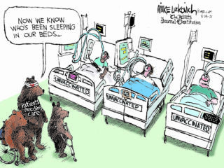 Editorial cartoons for week of Aug. 22