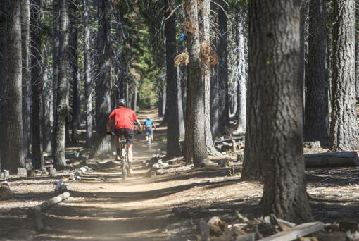 A pair of mountain bikers ride along the Tumalo Creek Trail near Skyliner Sno-park.