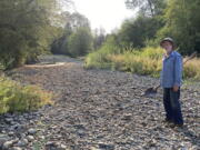 Jack Dwyer stands on the dry creek bed of Deer Creek in Selma, Ore. on Thursday, Sept. 2, 2021. In 1972, Dwyer pursued a dream of getting back to the land by moving to an idyllic, tree-studded parcel in Oregon with Deer Creek running through it. . But now, Deer Creek has become a dry creek bed after several illegal marijuana grows cropped up in the neighborhood last spring, stealing water from both the stream and aquifers and throwing Dwyer's future in doubt.
