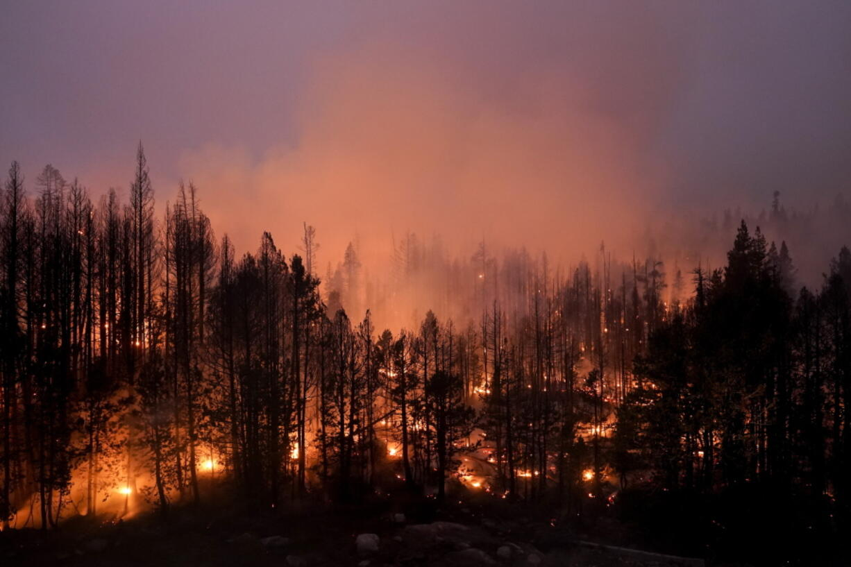 Trees scorched by the Caldor Fire smolder in Eldorado National Forest, Calif., Friday, Sept. 3, 2021. (AP Photo/Jae C.