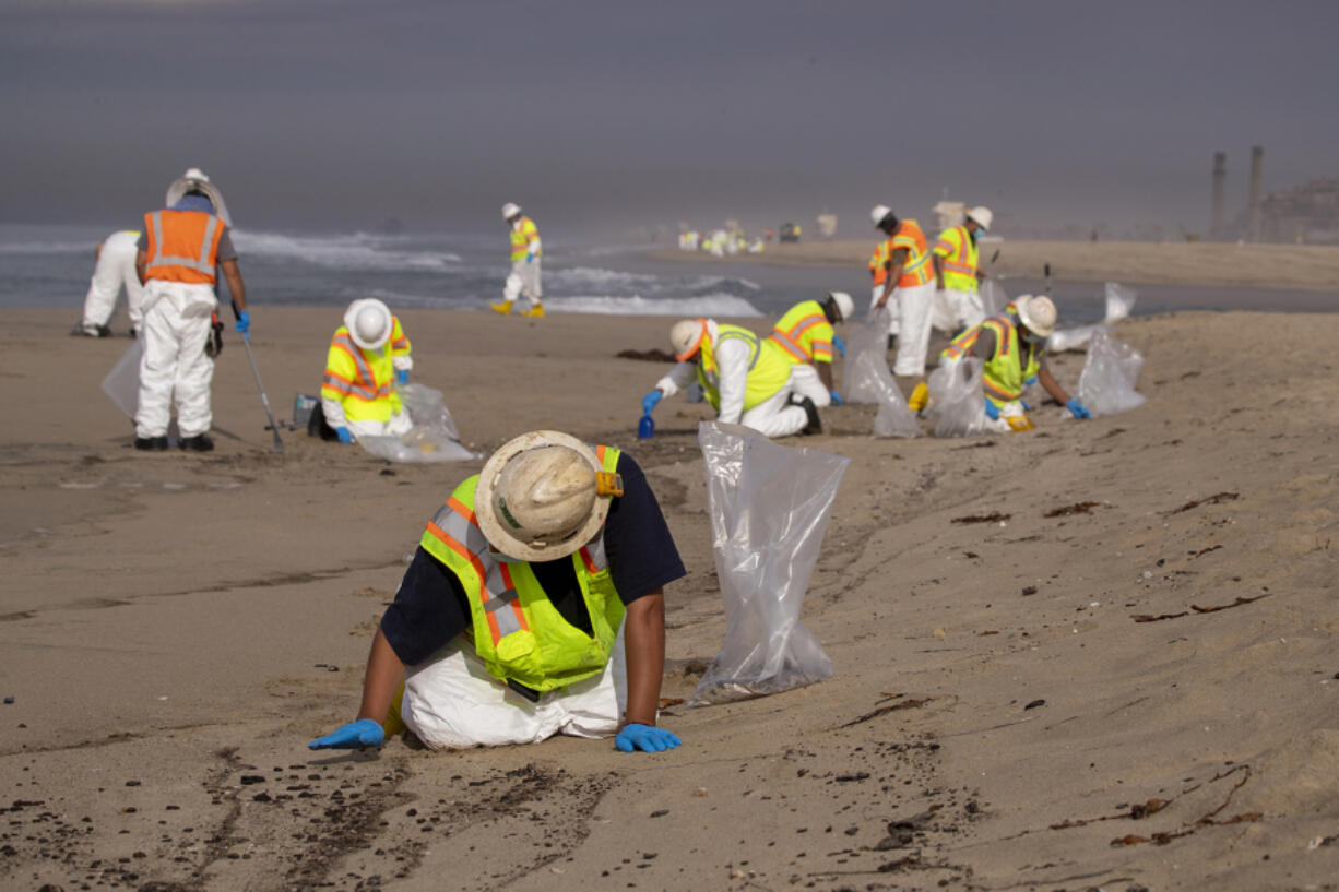 Cleanup crews spread out across the beach as they begin cleaning up oil in the sand from a major oil spill on Huntington State Beach in Huntington Beach Monday, Oct. 4, 2021. Cleanup crews began cleaning up the the damage from a major oil spill off the Orange County coast that left crude spoiling beaches, killing fish and birds and threatening local wetlands. (Allen J.